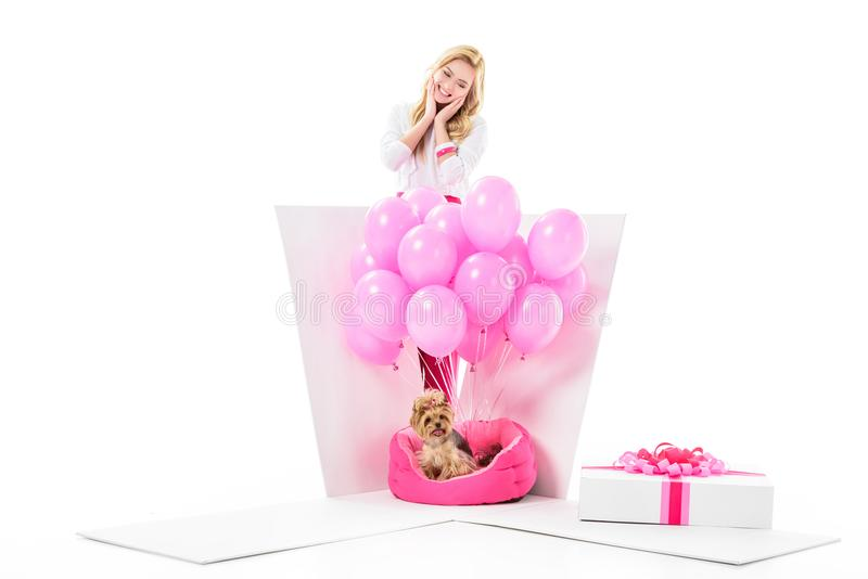 Woman surprised by Yorkshire terrier in gift box stock image