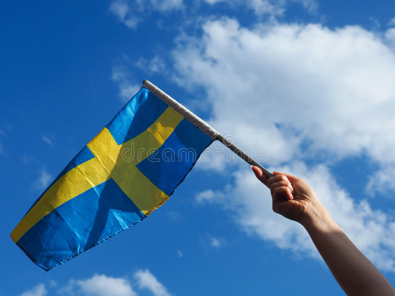 Woman with the Swedish flag royalty free stock image
