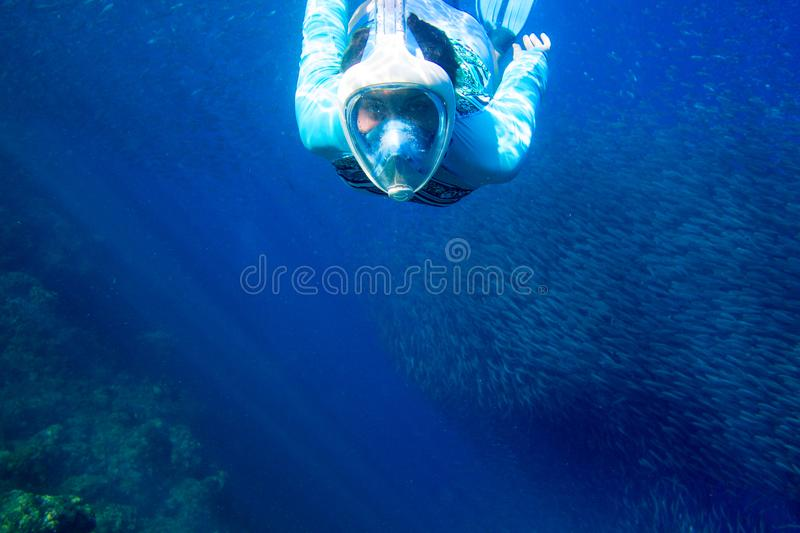 Woman swim with fish school. Girl snorkeling in full-face mask. Snorkel with fish colony underwater photo stock image