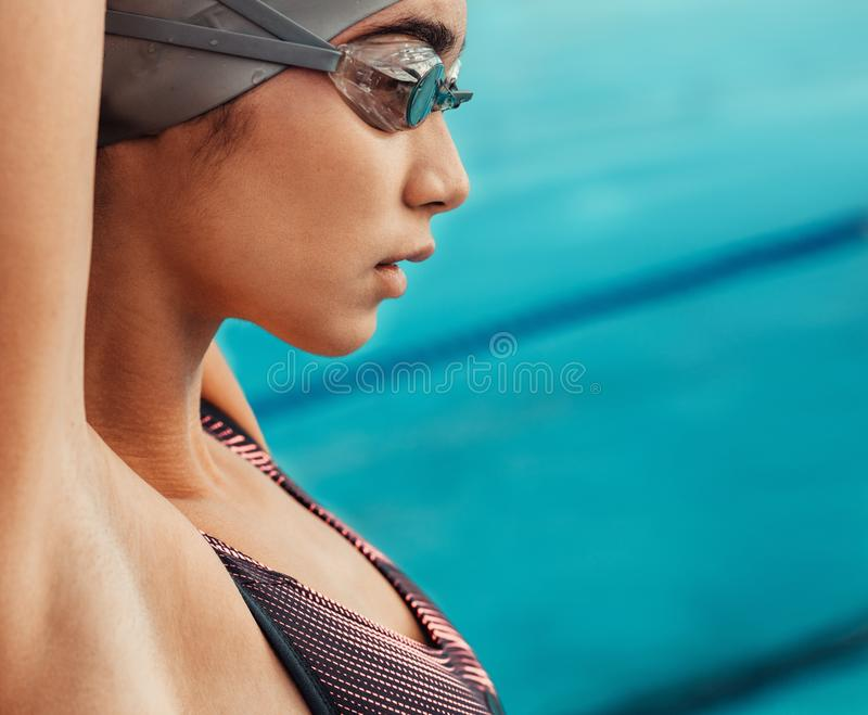 Woman swimmer stretching body before swim stock photography