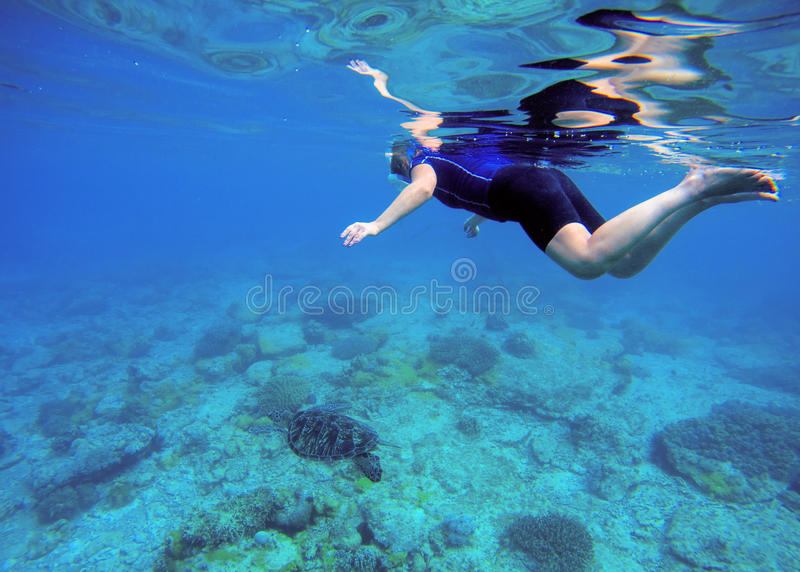 Woman swimming with sea turtle. Tropical sea background. Woman swims undersea in swimming costume and full-face mask. Underwater photo of female snorkel stock photo