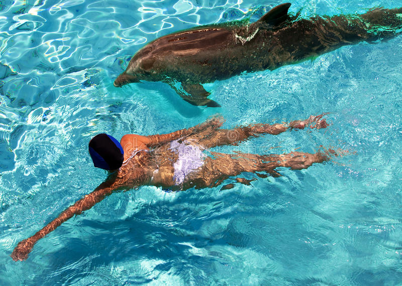 The woman swims in the sea near a dolphin royalty free stock image