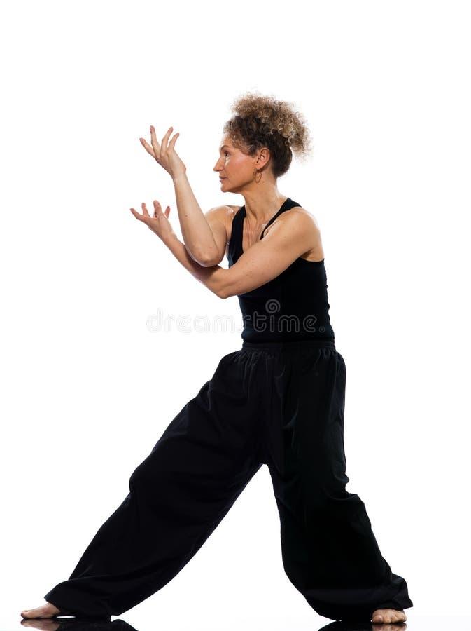 Download Woman tai chi stock image. Image of caucasian, girl, people - 22225155