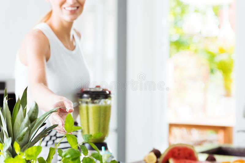 Woman taking leaves of basil royalty free stock images