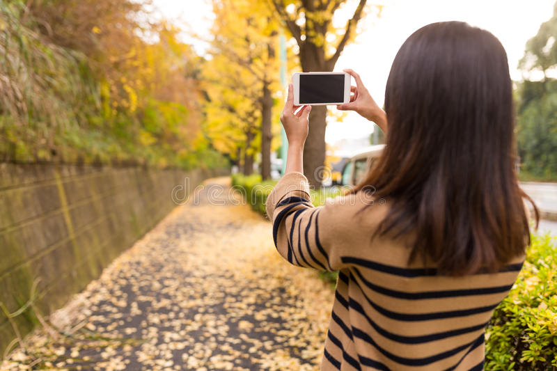 Woman taking photo at autumn royalty free stock photography