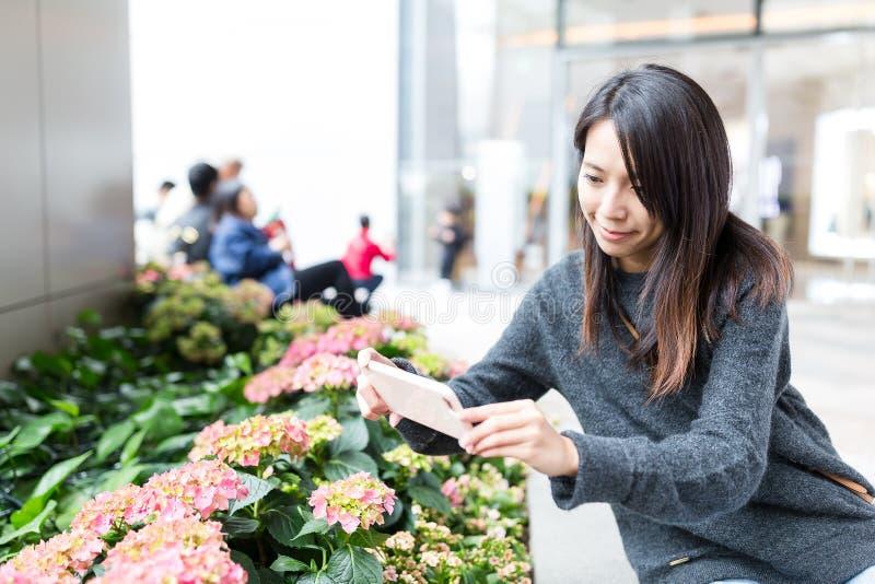 Woman taking photo on flower stock image