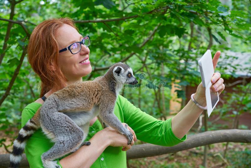 Woman taking photo selfie with ring tailed lemur stock photography