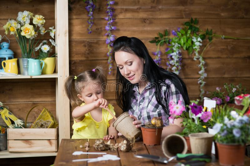 Download Mother And Daughter Watering Potted Plants Stock Photo ...