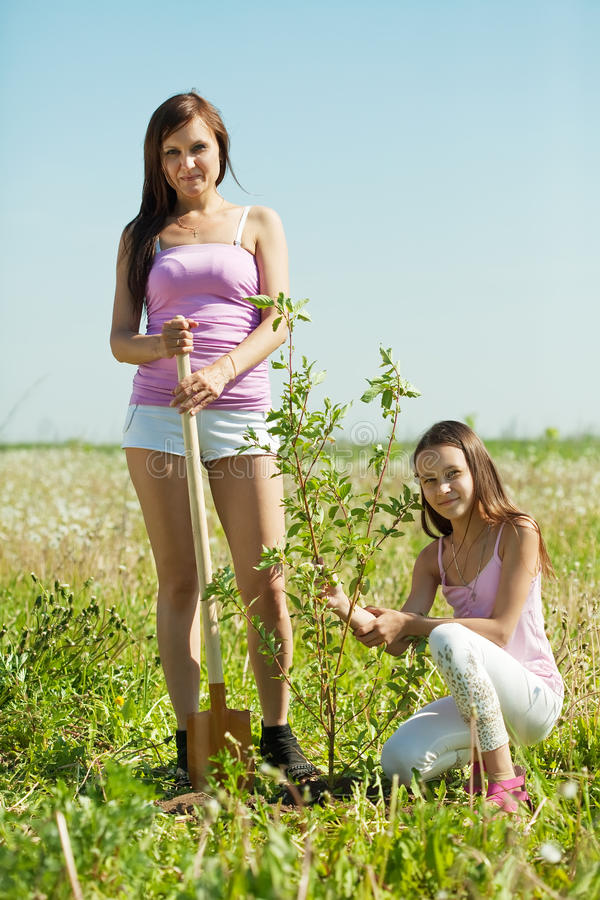 Woman with teen daughter resetting tree royalty free stock photo
