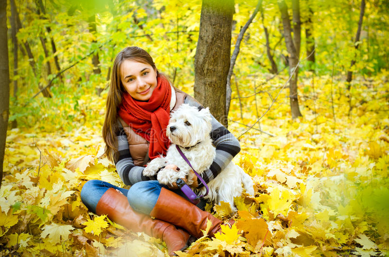 Woman with terrier stock image