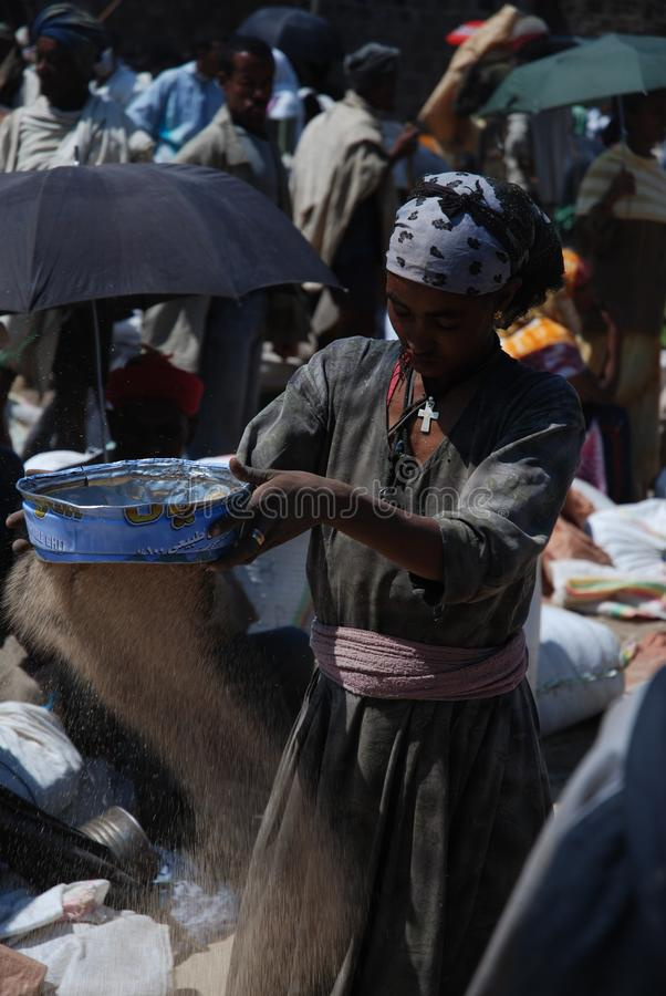 Lalibela, Wollo, Ethiopia, circa February 2007: Woman threshing teff stock image
