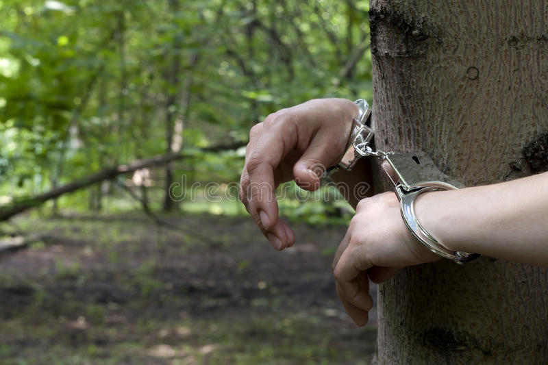 Download Woman Tied To A Tree In The Forest Stock Photo - Image: 32002338