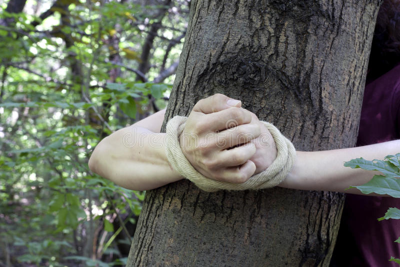 Download Woman Tied To A Tree In The Forest Stock Photo - Image: 32002388