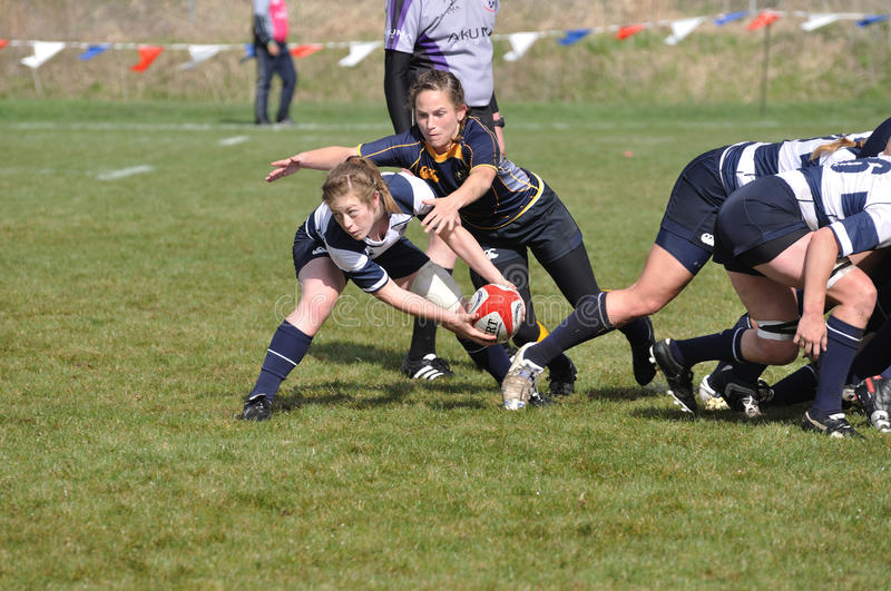 Woman About to Pass Ball After a Rugby Scrum. BYU player about to pass the ball After a scrum in a women's collegiate rugby match between Navy and the Brigham royalty free stock photos