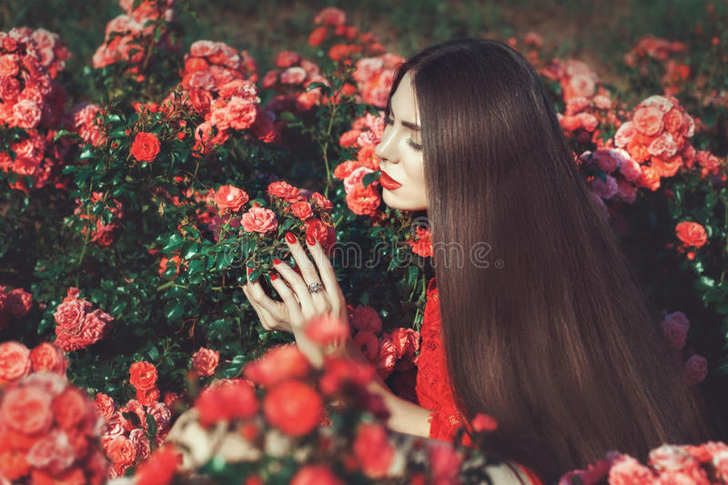 Woman touching flowers. royalty free stock photography