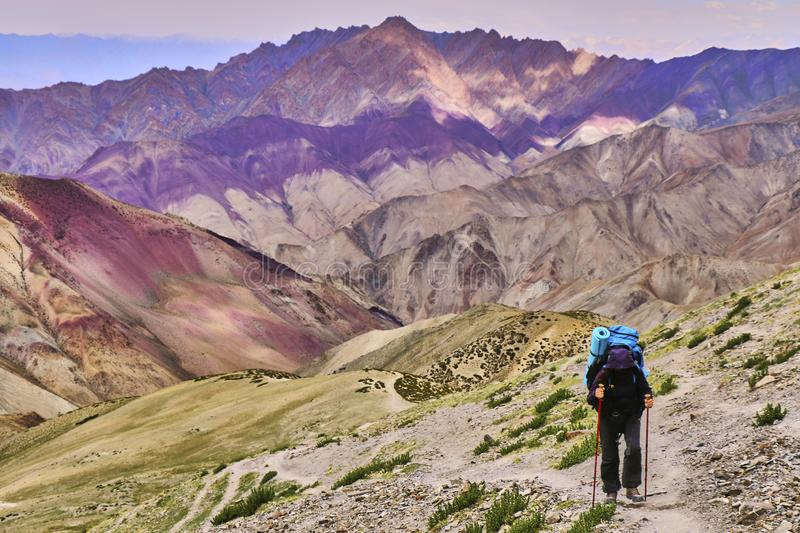 Woman tourist with a backpack climbing steep slope with beautiful colorful Himalaya mountains in the background, Ladakh, India. Front view of a woman tourist stock photos