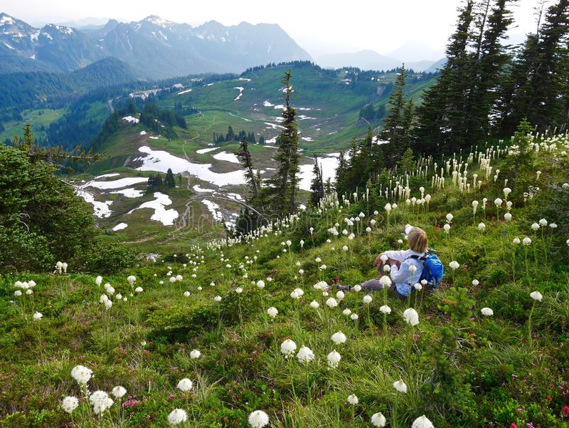 Woman tourist sitting among wild flowers with mountain view. royalty free stock images