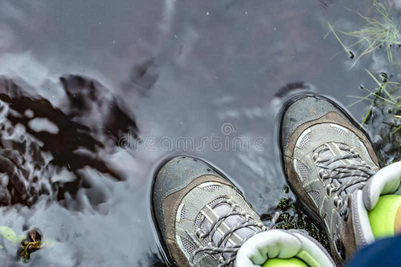 Woman in tourist waterproof hiking boots is standing in the water in a puddle. Close-up royalty free stock image