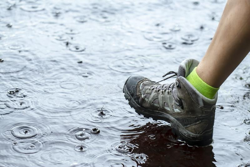 Woman in tourist waterproof hiking boots walking on water in puddles in the rain. Close-up stock photography