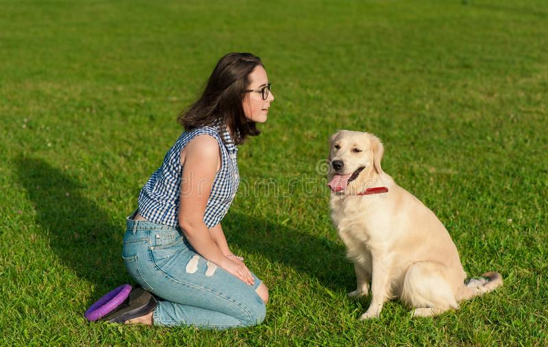 Woman training her dog golden retriever in the park royalty free stock images
