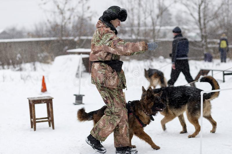 The woman trains German shepherd, winter stock image