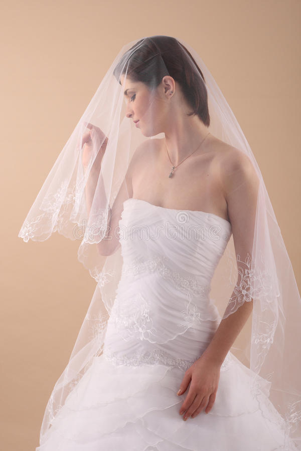 Download Woman With Transparent Wedding Veil Stock Image - Image: 40147083