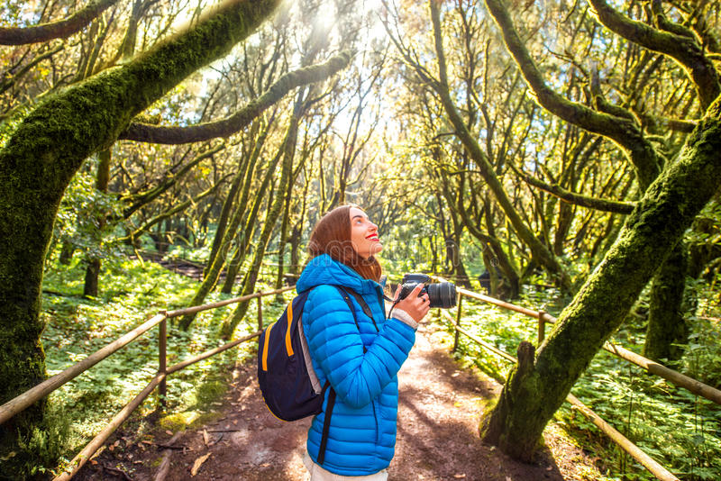 Woman traveling evergreen forest. Young woman in blue jacket traveling with backpack, photographing with photo camera beautiful evergreen forest in Garajonay stock photo