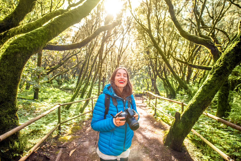 Woman traveling evergreen forest. Young woman in blue jacket traveling with backpack, photographing with photo camera beautiful evergreen forest in Garajonay royalty free stock images