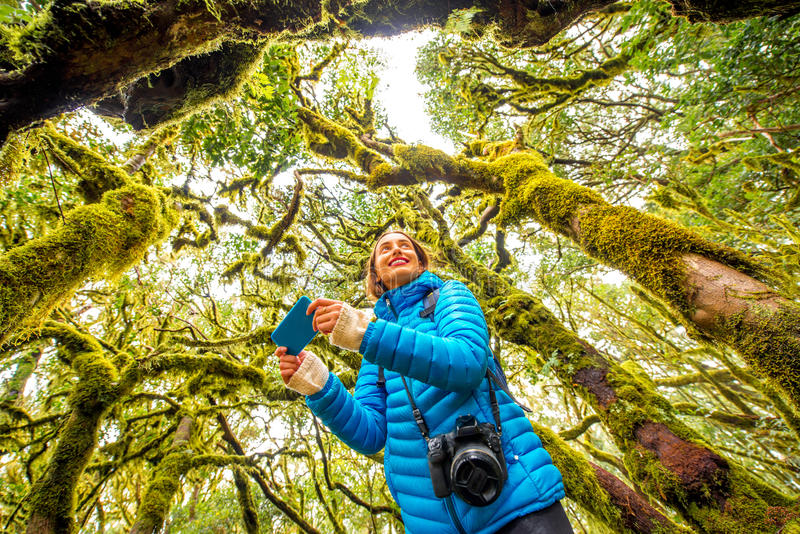 Woman traveling evergreen forest. Young woman in blue jacket traveling with backpack, photographing with smart phone beautiful evergreen forest in Garajonay park stock image