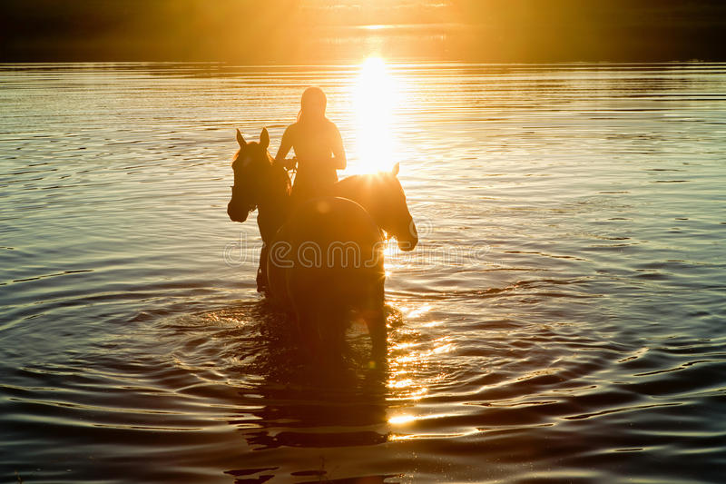 Woman with Two Horses in a Lake royalty free stock photography
