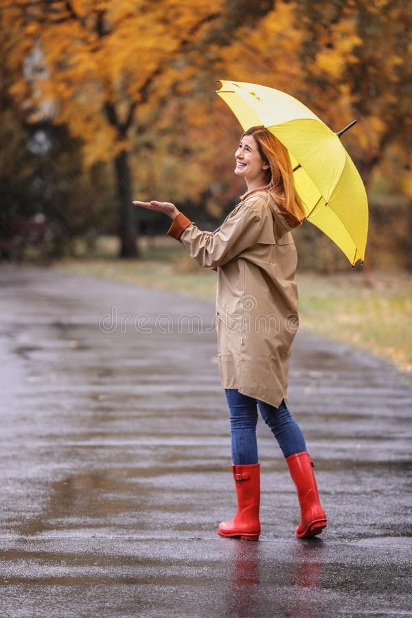 Woman with umbrella taking walk in autumn park royalty free stock photos
