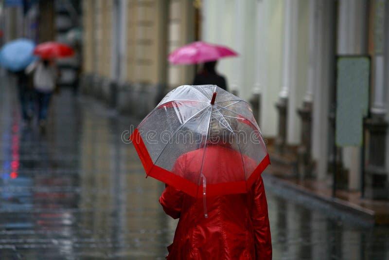 Woman with umbrella walking in rain royalty free stock image