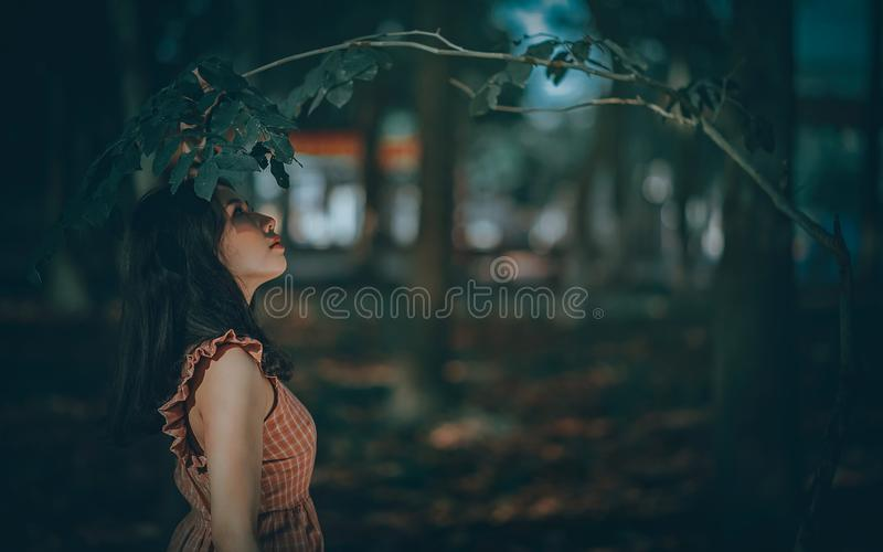 Woman Under Green Leaf Tree stock image