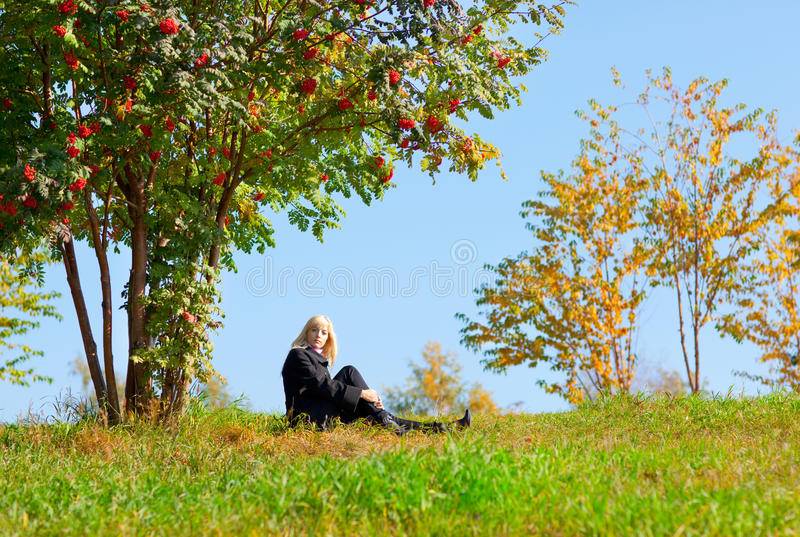 Woman under mountain ash tree. Beautiful young woman sits under the tree in autumn park under mountain ash tree stock photo