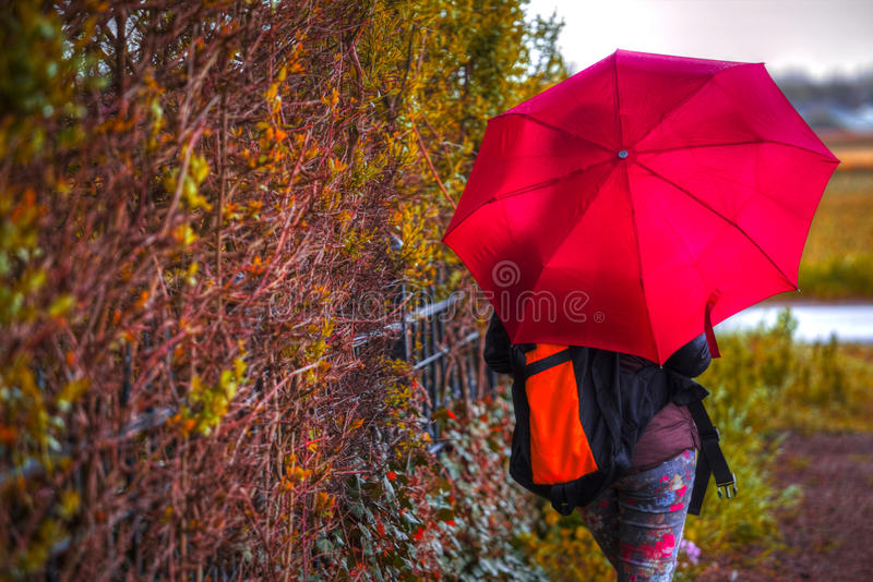 Woman under an umbrella stock images