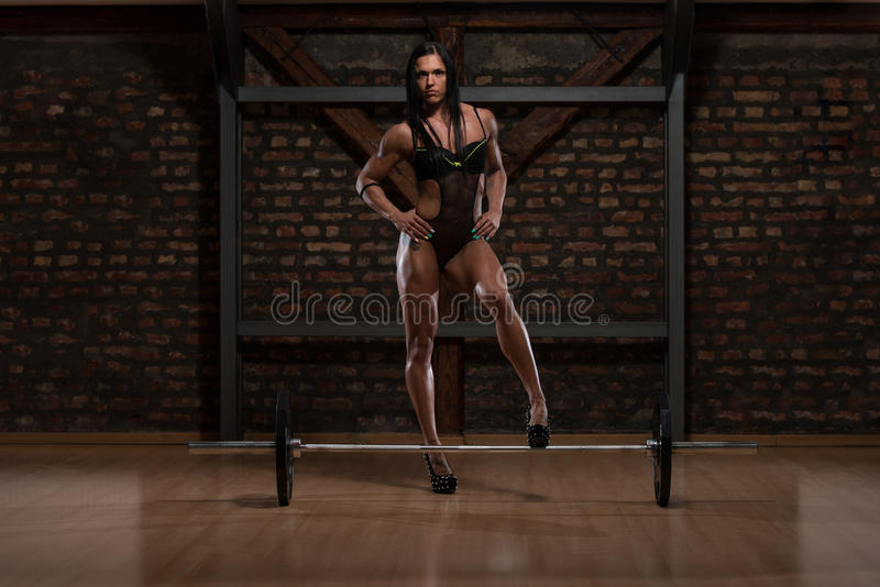 Woman In Underwear Showing Her Well Trained Body. Young Woman In Underwear Posing In The Gym royalty free stock photos