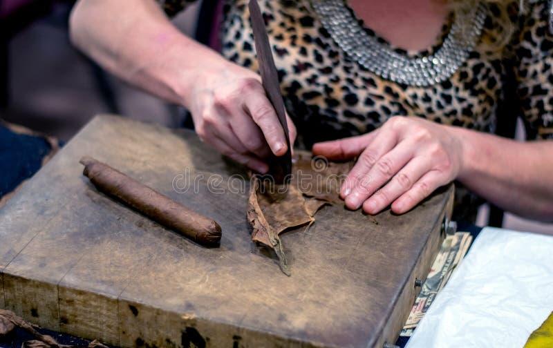 Woman uses tools to make handmaded cigars stock photos
