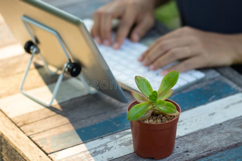 Woman is using a tablet stock images