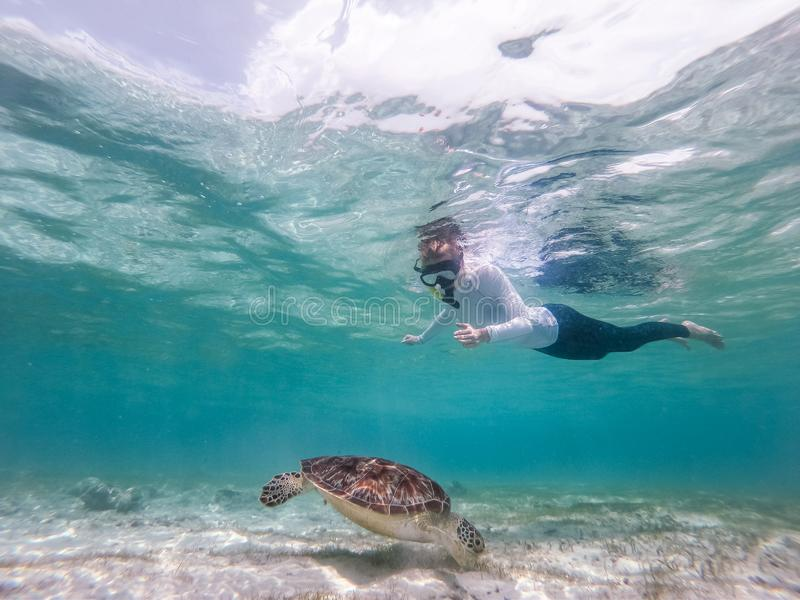 Woman on vacations wearing snokeling mask swimming with sea turtle in turquoise blue water of Gili islands, Indonesia. Woman wearing snokeling mask swimming with stock photo