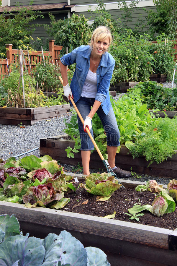 Free Woman Vegetable Garden Royalty Free Stock Images - 44919969