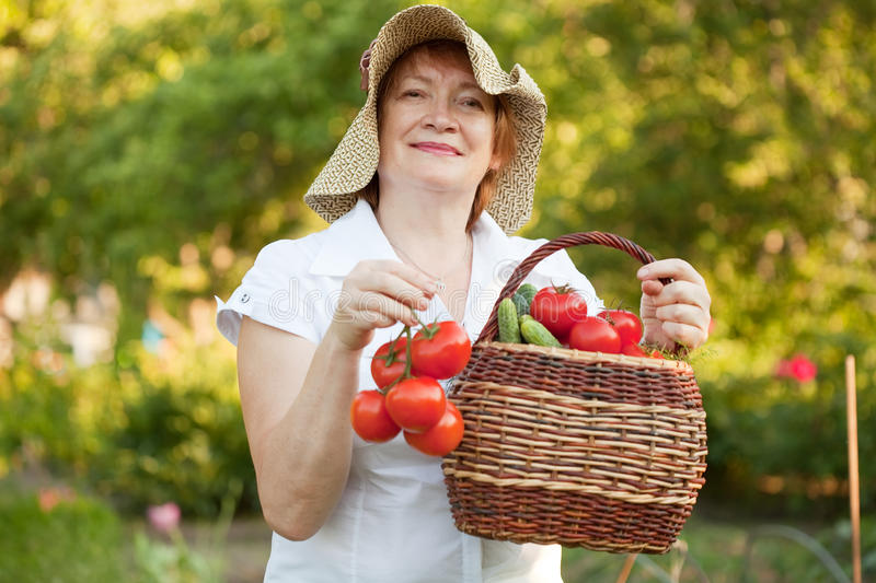 Download Woman in vegetables garden stock image. Image of happiness - 39511511