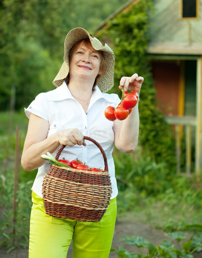 Download Woman With Vegetables Harvest Stock Image - Image of person, 60: 39511547