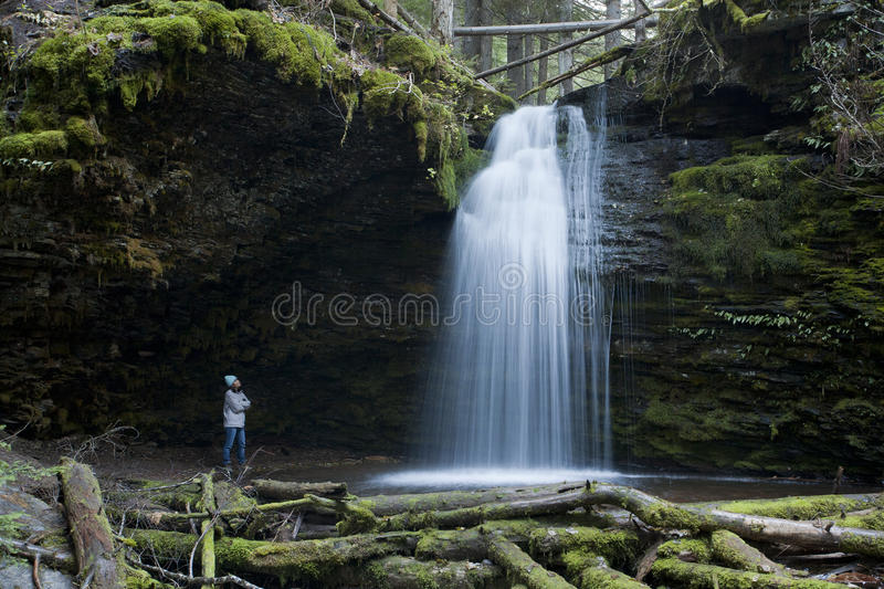 A woman views the falls. royalty free stock images
