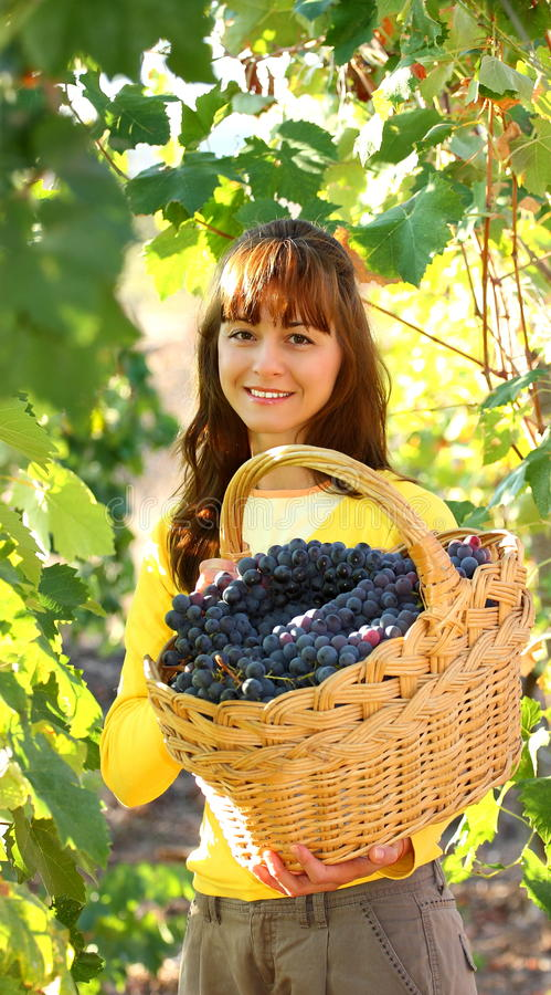 Download Woman In Vineyard Stock Photo - Image: 26951120
