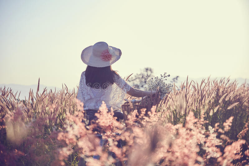 Woman and vintage bicycle with basket full of grass in the field royalty free stock photos