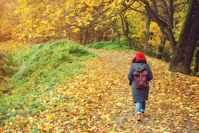 Woman walking in autumn park. View from the back. stock photo