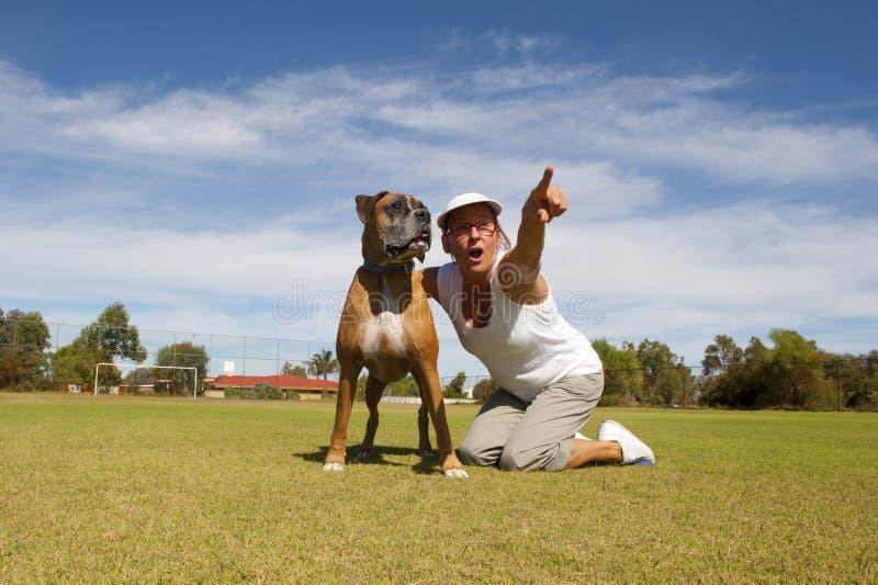 Woman walking boxer bulldog in public park stock photo