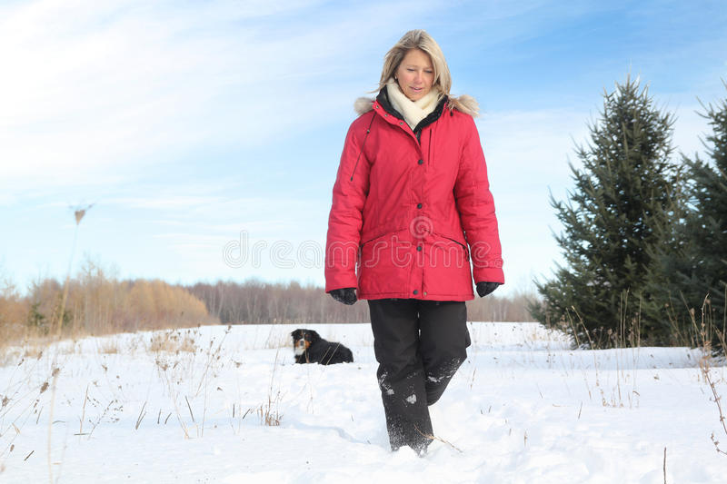 Download Woman walking with dog stock image. Image of female, canada - 23520273