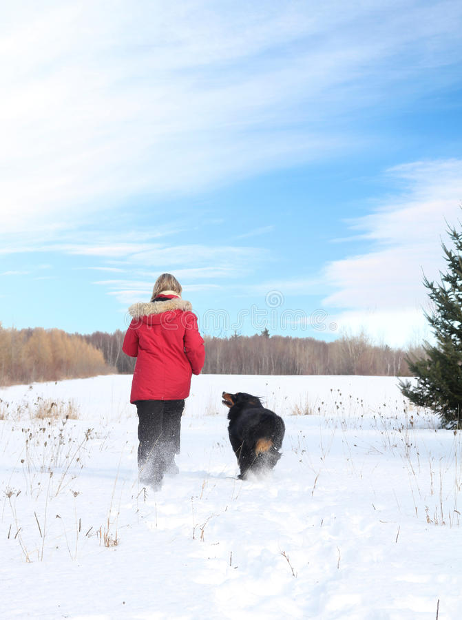 Woman walking with dog in snow stock photography