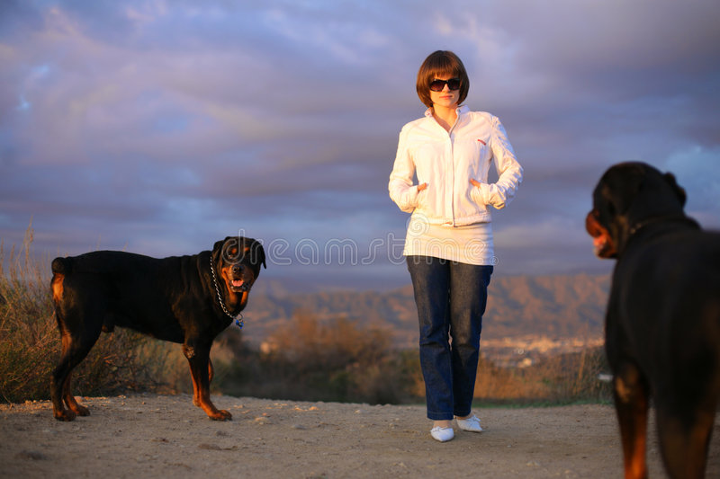Download Woman Walking Dogs Stock Photography - Image: 8015762